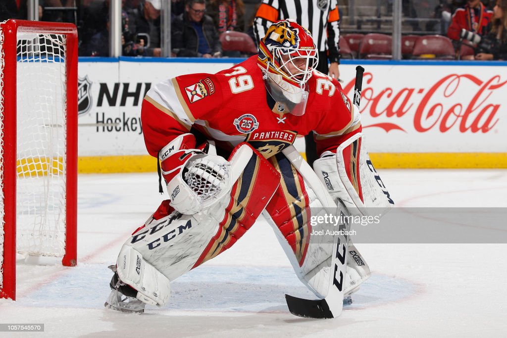 Detroit Red Wings v Florida Panthers : News Photo