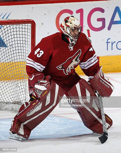 Goaltender Mike McKenna of the Arizona Coyotes warms up before the NHL game against the San Jose Sharks at Gila River Arena on February 13 2015 in...
