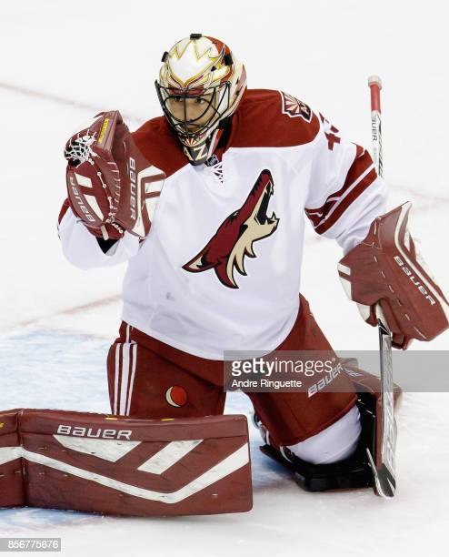 Goaltender Mike McKenna of the Arizona Coyotes warms up prior to a game against the Toronto Maple Leafs at the Air Canada Center on January 29 2015...