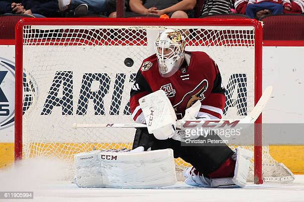 Goaltender Mike Smith of the Arizona Coyotes allows a first period goal to Nick Sorensen of the Anaheim Ducks during the preseason NHL game at Gila...