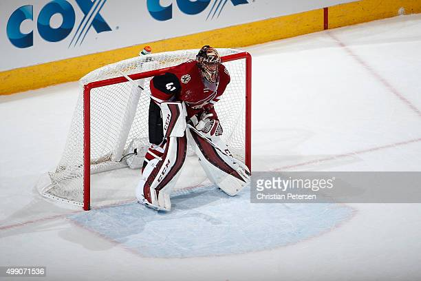 Goaltender Mike Smith of the Arizona Coyotes in action during the NHL game against the Anaheim Ducks at Gila River Arena on November 25 2015 in...