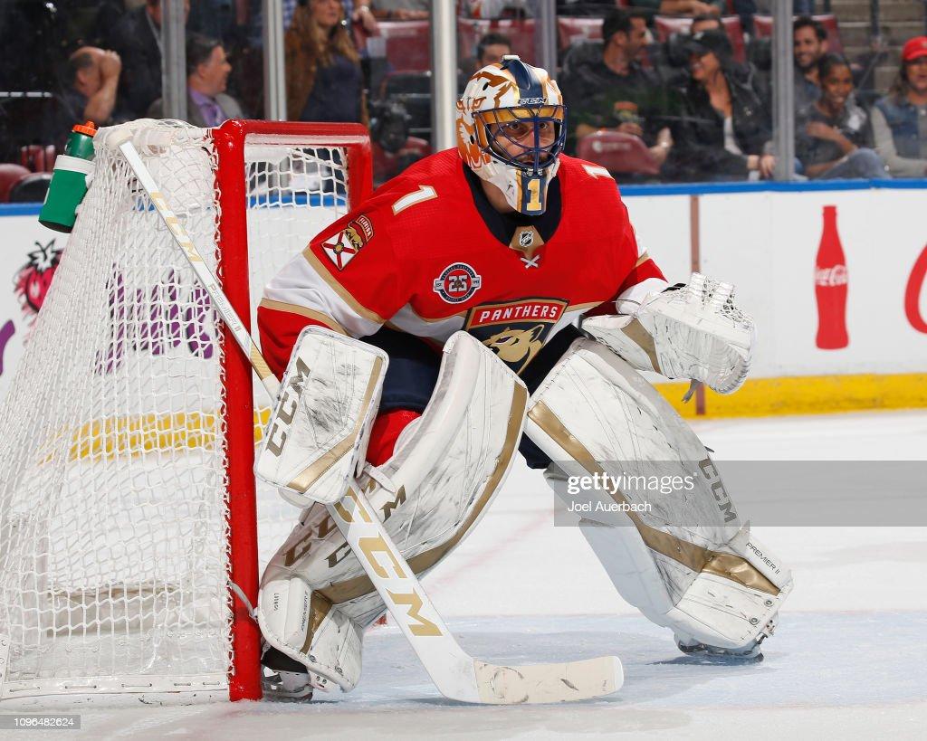 Toronto Maple Leafs v Florida Panthers : News Photo