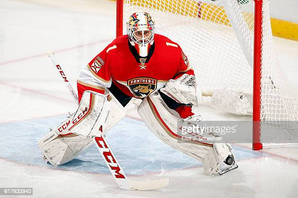 Goaltender Roberto Luongo of the Florida Panthers stands ready to defend the net against the Colorado Avalanche at the BBT Center on October 22 2016...