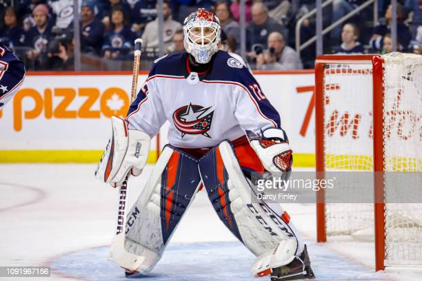 Goaltender Sergei Bobrovsky of the Columbus Blue Jackets keeps an eye on the play during first period action against the Winnipeg Jets at the Bell...