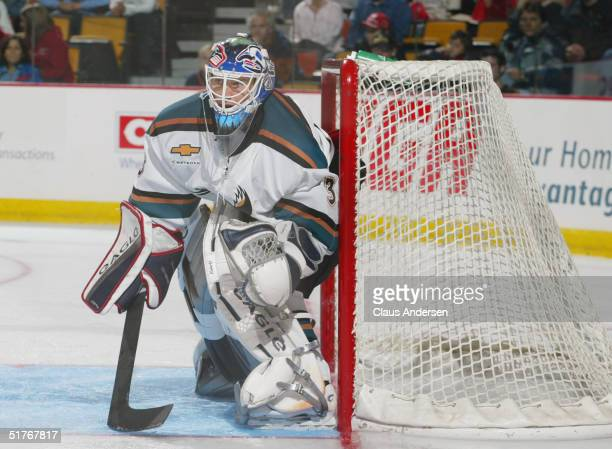 Goaltender Wade Flaherty of the Manitoba Moose tries to get a looks at the puck during the game against the Hamilton Bulldogs at the Copps Coliseum...