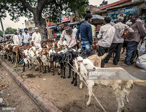 Goat market in Old Delhi India