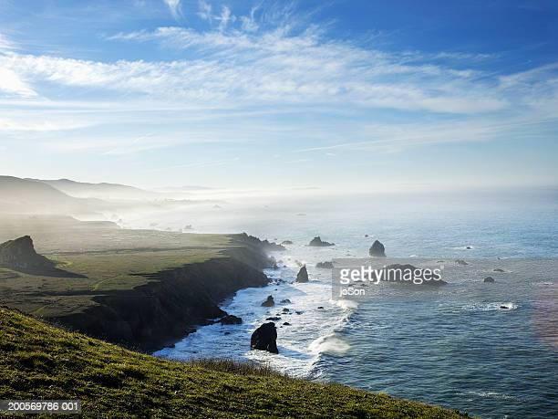 goat rock state beach area along pacific coast - sonoma county stock pictures, royalty-free photos & images