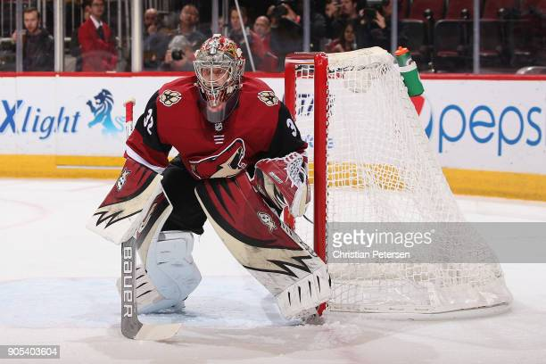 Goatlender Antti Raanta of the Arizona Coyotes in action during the NHL game against the Nashville Predators at Gila River Arena on January 4 2018 in...