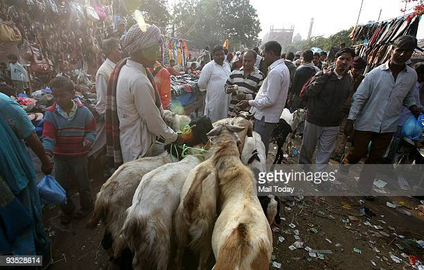 Goats for sale for upcoming Eid Festival at Jama Masjid in new delhi on Thursday Muslims slaughter sheep on the first day of the Muslim holiday of...
