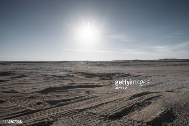 gobi desert - rough stock pictures, royalty-free photos & images