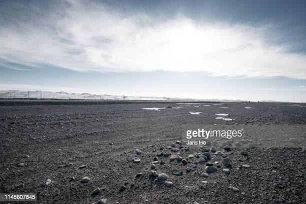 gobi desert - wet stock pictures, royalty-free photos & images