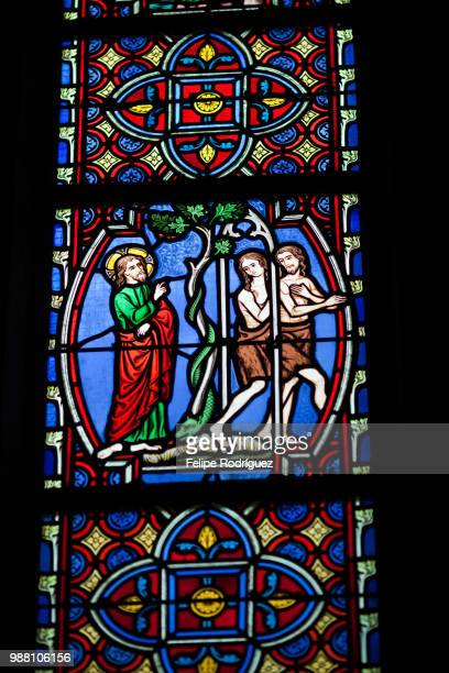 God evicts Adam and Eve from the Garden of Eden, Stained glass window, Saint Pierre Cathedral, Vanne