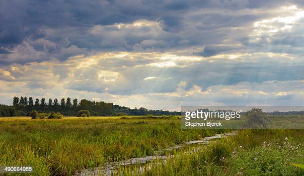 God rays through stormy clouds over marsh land