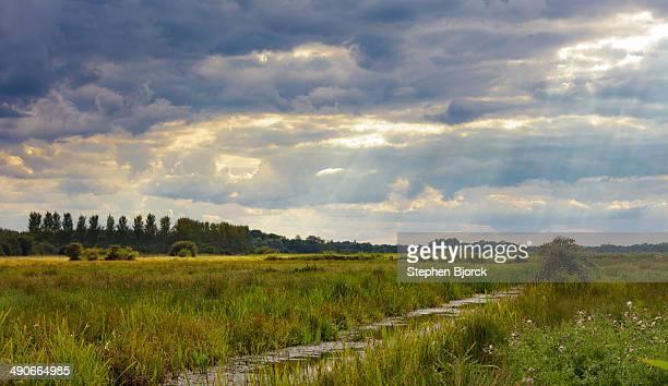 god rays through stormy clouds over marsh land - moeras stockfoto's en -beelden