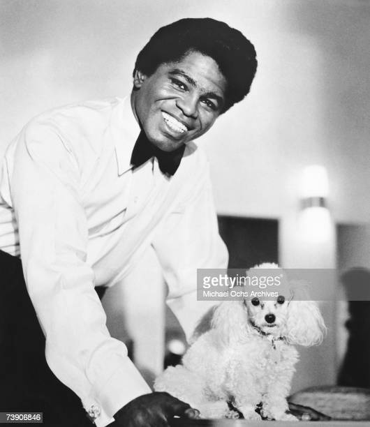 Godfather of Soul James Brown poses for a portrait with a toy poodle in 1960 in New York New York