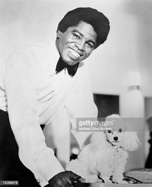 'Godfather of Soul' James Brown poses for a portrait with a toy poodle in 1960 in New York New York
