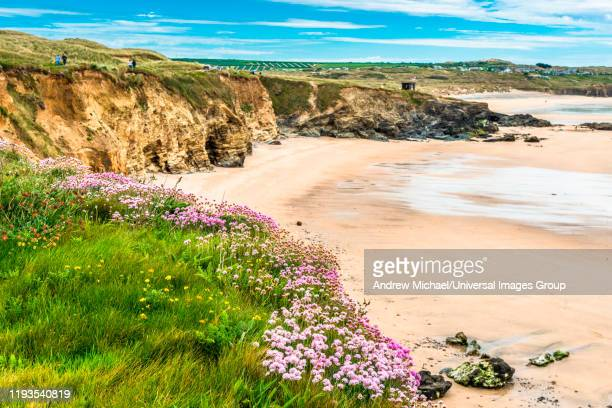 godrevy head at st. ives bay, cornwall, england, united kingdom, europe. - st. ives cornwall stock pictures, royalty-free photos & images