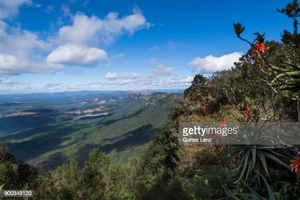 gods window, panorama route, mpumalanga, south africa - mpumalanga province stock pictures, royalty-free photos & images
