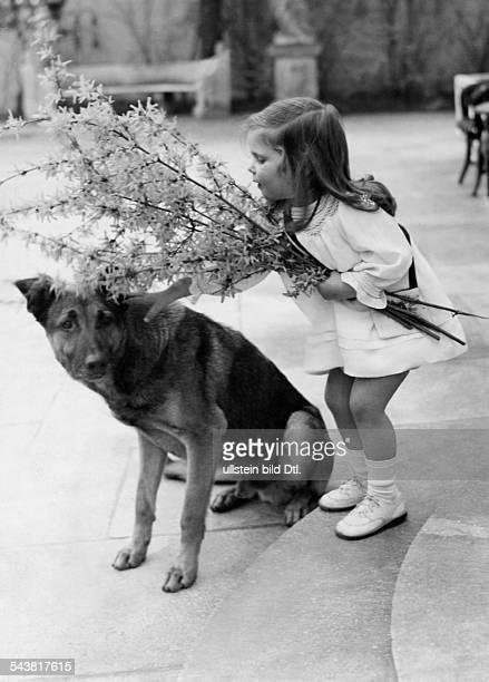 Goebbels Joseph *29101897Politiker NSDAP D Tochter Helga mit einemForsythienstrauss 1937