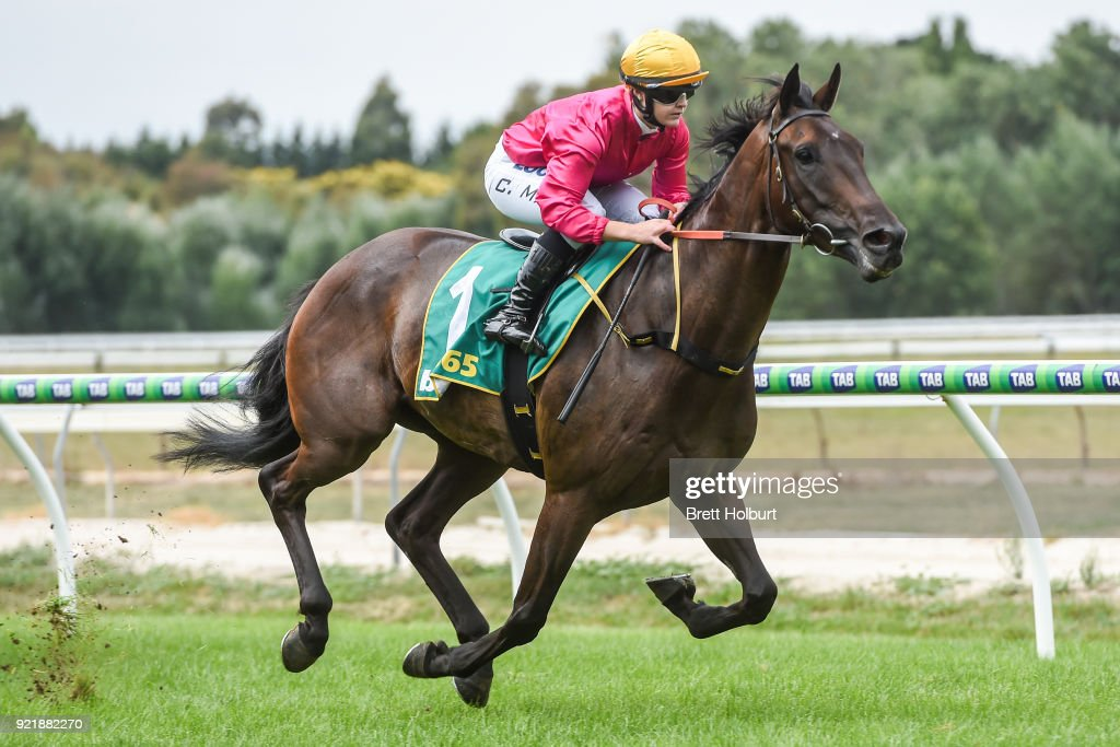 bet365 Racing Cash back BM58 Handicap : News Photo