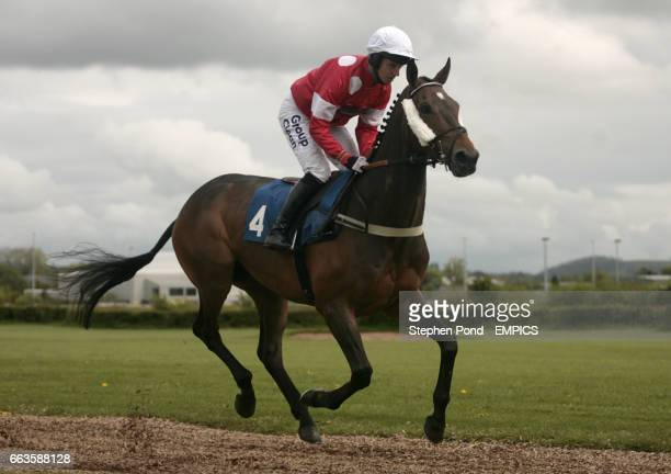 Gofannon ridden by Noel Fehily going to post for the Rose Lion In Bromyard Novices' Handicap Hurdle