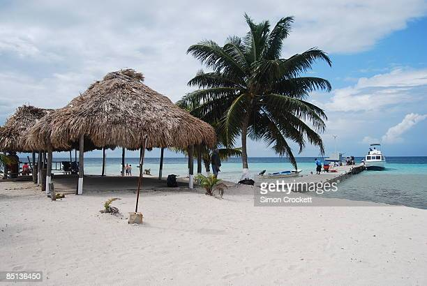 goff's caye, belize - simon crockett stock pictures, royalty-free photos & images