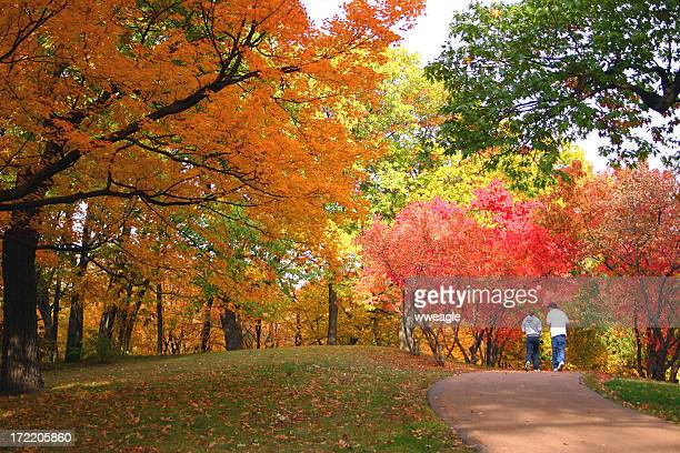 going for a walk in the park - indiana stock pictures, royalty-free photos & images