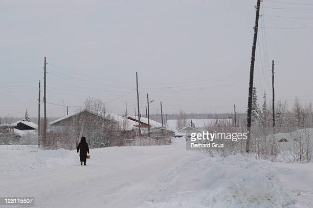 going home in frost and snow desert - bernard grua photos et images de collection