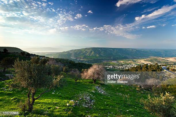 golan heights and lake galilee - golan heights stock pictures, royalty-free photos & images