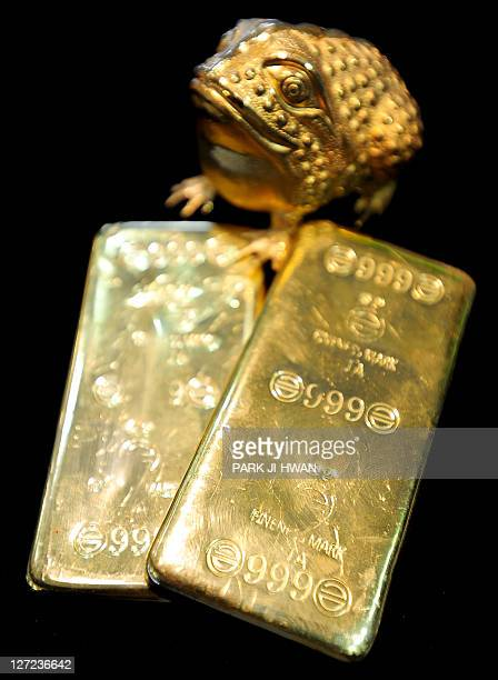 Gold bars and an Asian toad are displayed at a jewellery shop in Seoul on September 27 2011 Gold tumbled below 1600 USD an ounce in Hong Kong trade...