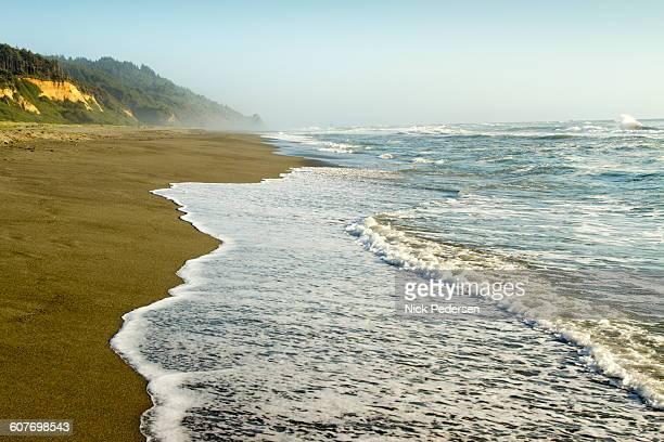 Gold Bluffs Beach in California