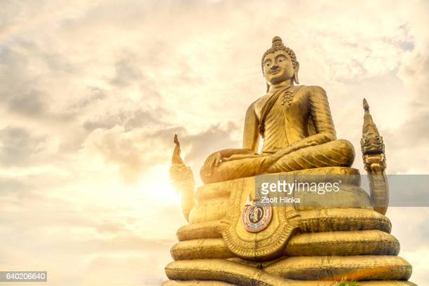 Gold Buddha - Phuket - Thailand