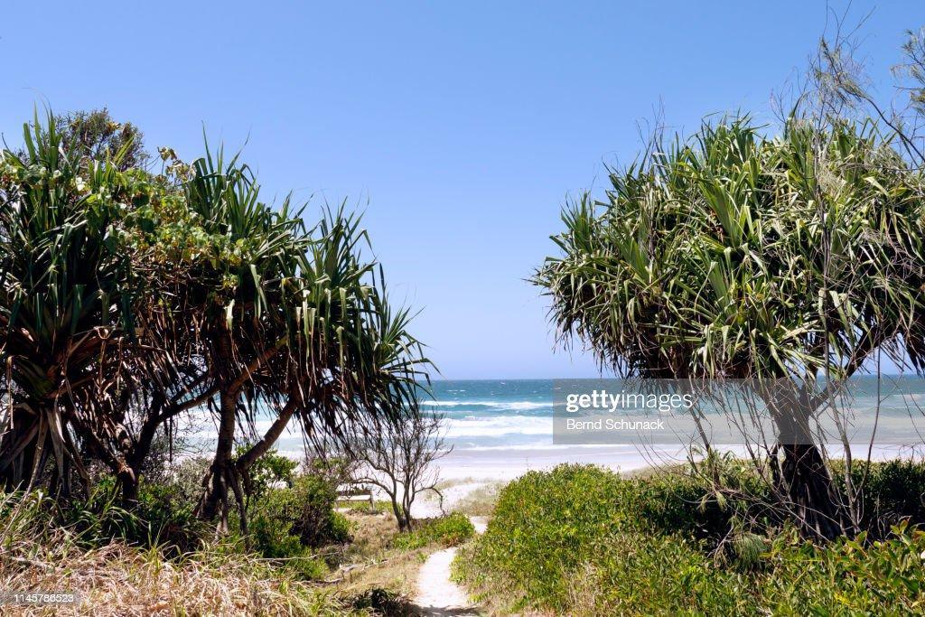 Gold Coast, Australia : Stock-Foto