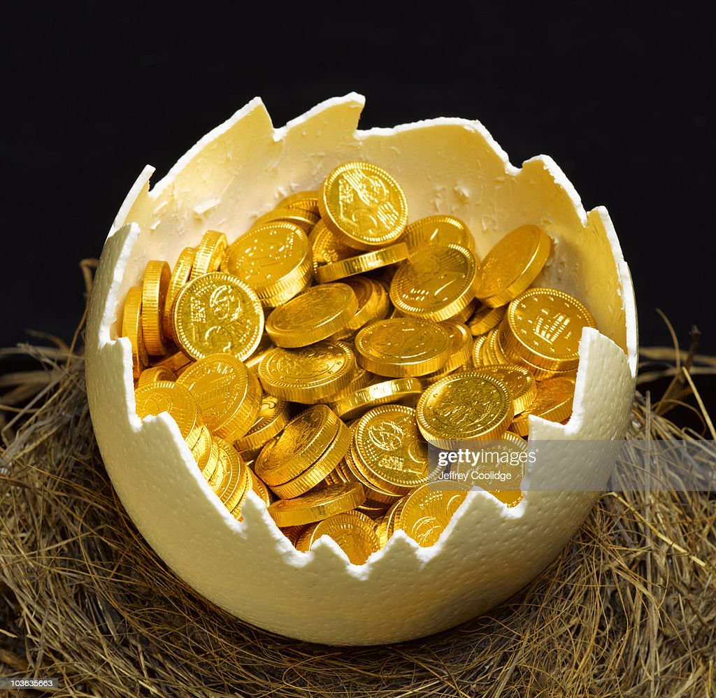 Gold Coins inside Egg in Nest : Stock Photo