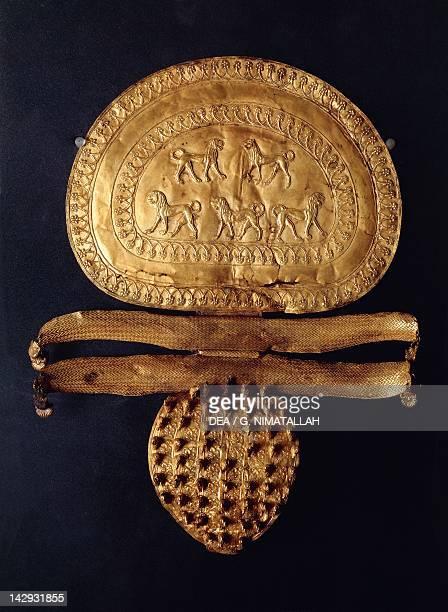 Gold disc fibula from the RegoliniGalassi Tomb in Cerveteri Etruscan Civilization 7th Century BC Città Del Vaticano Vatican Museums Etruscan Museum