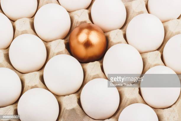 gold egg between white eggs - white gold stock pictures, royalty-free photos & images