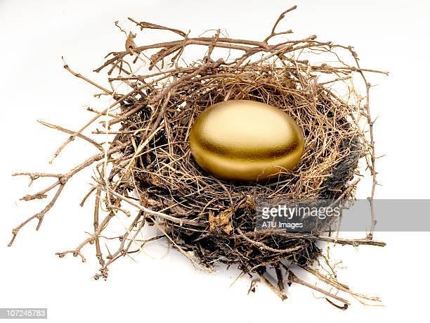 Gold egg in nest