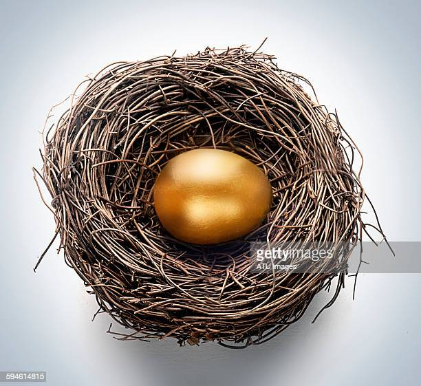 Gold egg nest