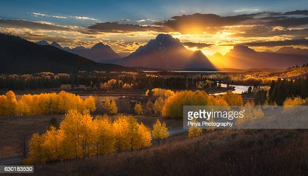 gold grand teton - grand teton national park stock pictures, royalty-free photos & images