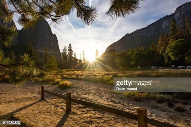 夕日にロッキー山脈の前の芝生をゴールド。ヨセミテ国立公園 - マーセド郡 ストックフォトと画像