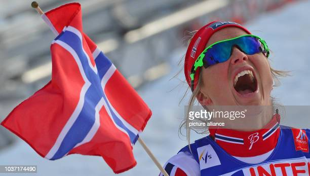 Gold medalist Therese Johaug of Norway reacts after crossing the finish line during the cross country women's 30 km Mass Start competition at the...