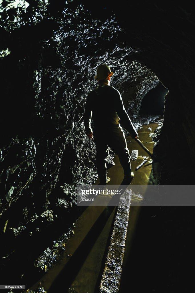 Gold Miner : Stock Photo