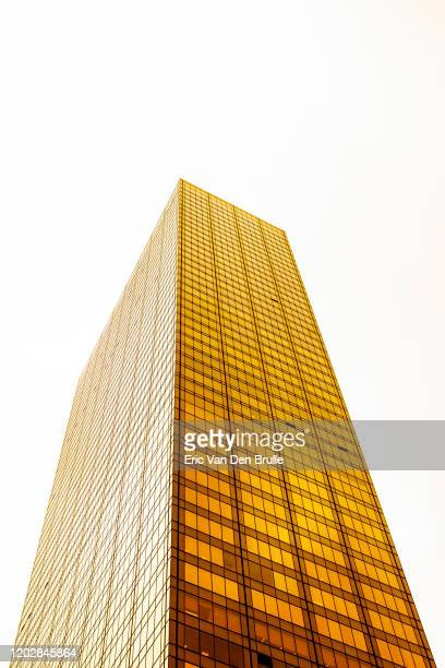 gold office building - eric van den brulle - fotografias e filmes do acervo