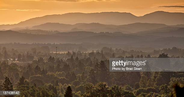 gold - eugene oregon stock photos and pictures