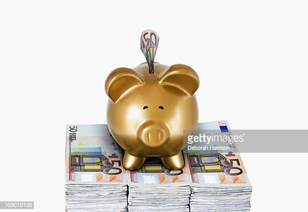 Gold Piggy Euro