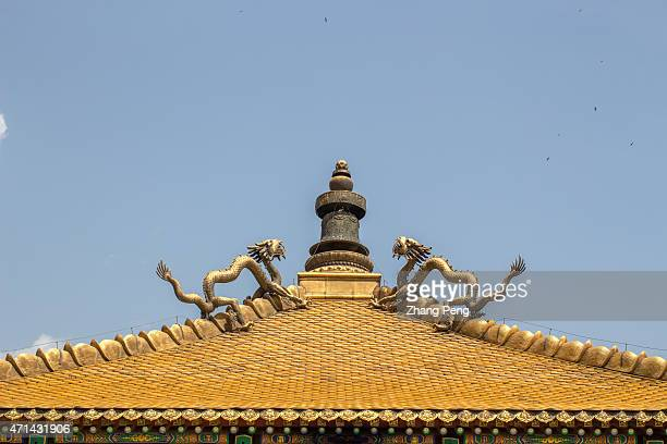 Gold plated dragon and copper tiles on the roof of the Miaogaozhuangyan Hall The Hall is the center of the temple and where the Penchen Lama preached...