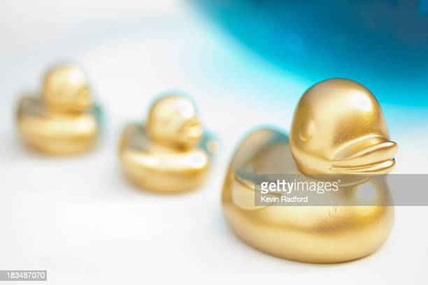 Gold rubber ducky