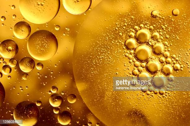 gold viscosity - cooking oil stock pictures, royalty-free photos & images