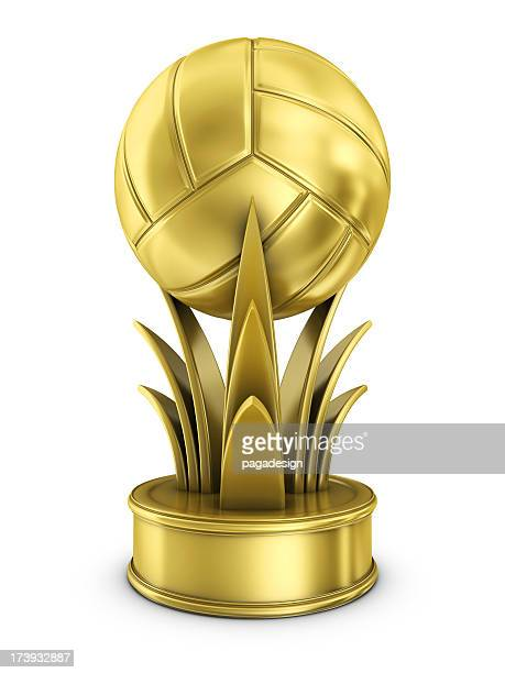 gold volleyball award