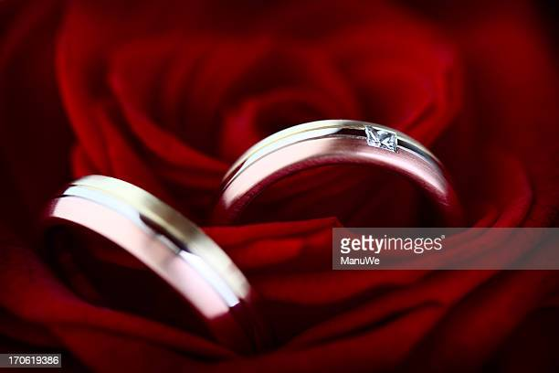 wedding red on resting two picture with a rose rings stock table online